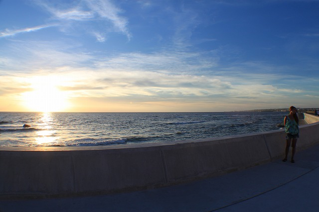ビーチ、マリン、パームシーズン、砂辺